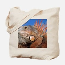 Iguana calendar Tote Bag
