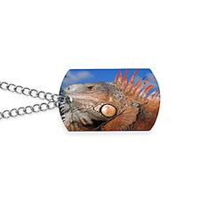 Iguana coin Dog Tags