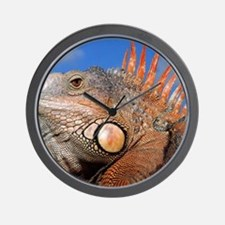 Iguana calendar Wall Clock