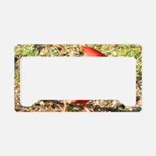 Cardinal postcards License Plate Holder