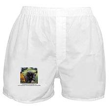 Unique Freida, the throw away kitty Boxer Shorts