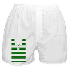 iphone - iShirt Green Strips Boxer Shorts