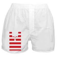 iPhone iShirt Red Strips Boxer Shorts