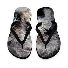 WolfhoundFace14x10_print Flip Flops