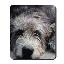 WolfhoundFace14x10_print Mousepad