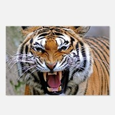 Atiger mousepad Postcards (Package of 8)
