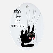 aim_high_use_curtains Oval Ornament