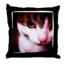 IMG_1041 Throw Pillow