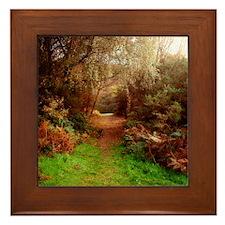 Autumn Path Framed Tile