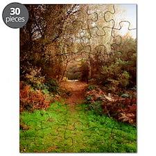 Autumn Path Puzzle