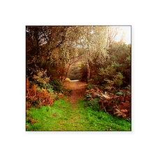 """Autumn Path Square Sticker 3"""" x 3"""""""
