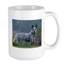 ACD in the Morning Mugs