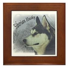 Siberian Husky Reflections Framed Tile