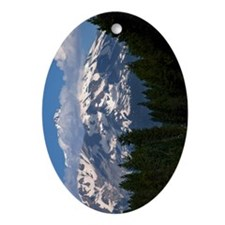 (13) Shasta On The Road Again Oval Ornament