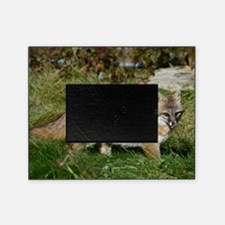9x12_print Picture Frame