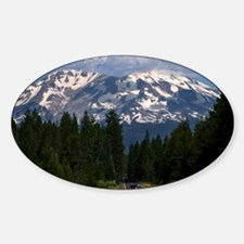 (12) Shasta On The Road Again Decal