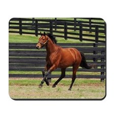 Big Brown Paddock_2011_cropped Mousepad