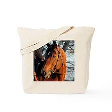Big Brown2_sized 8x10 Tote Bag