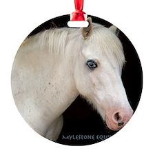 Keepsake-Logan Ornament