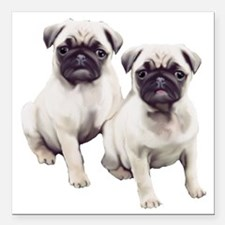 """two pugs sitting Square Car Magnet 3"""" x 3"""""""