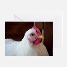 chicken mousepad Greeting Card