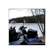 "2012-01_Jan_Ellen-LNRN Square Sticker 3"" x 3"""