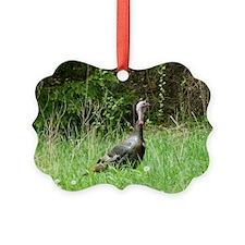 TKLP14.7x9.67 Ornament