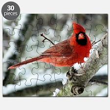 CA14.7x9.67SF Puzzle