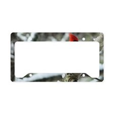 CA14.7x9.67SF License Plate Holder