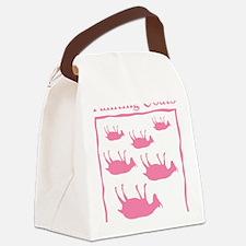 FG_Big_Pk Canvas Lunch Bag