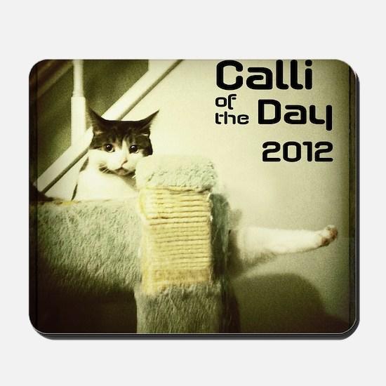 calendar cover Mousepad