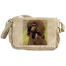 Poodle Standard 9R063D-099 Messenger Bag
