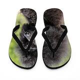 Poodle Flip Flops