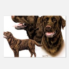 Choc Lab Multi Postcards (Package of 8)