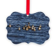 _MG_5381 Ornament
