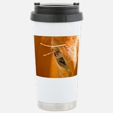 The Horses Shadow Revealed Travel Mug