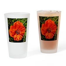 Poppy Drinking Glass
