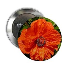 "Poppy 2.25"" Button"