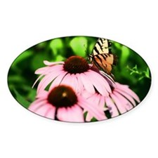 Resting Butterfly Decal