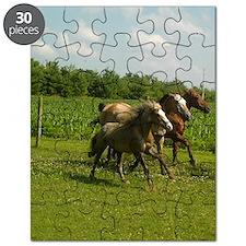three horses 2 Puzzle