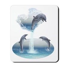 The Heart Of The Dolphins Mousepad