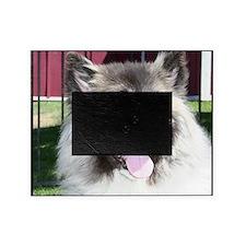 akita dog Picture Frame