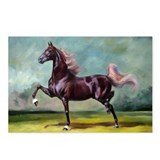 Saddlebred horses Postcards
