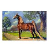 Horse saddlebred Postcards