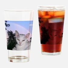 Cat-Calendar-Cover Drinking Glass