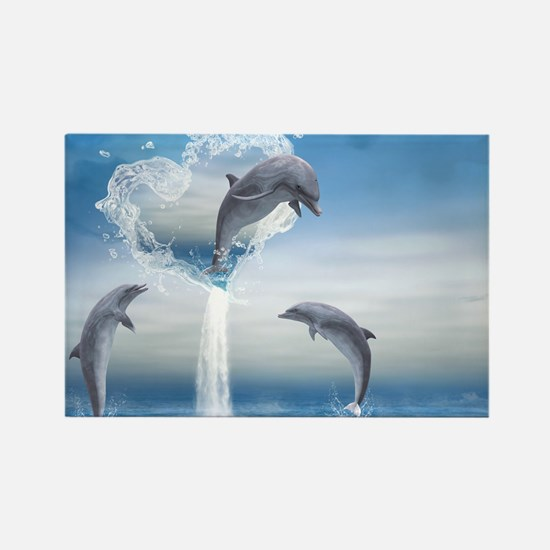 dolphins_laptop_skin Rectangle Magnet