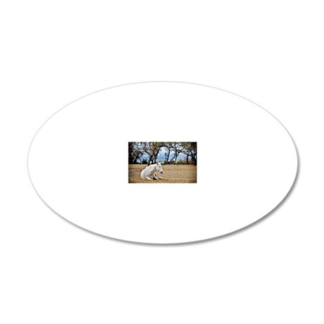 01jan-dk-11.5x9_-White-Horse 20x12 Oval Wall Decal
