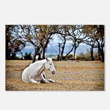 01jan-dk-11.5x9_-White-Ho Postcards (Package of 8)