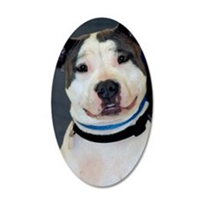 amstaff-photo2 35x21 Oval Wall Decal