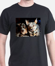 Cattle Dog Brothers T-Shirt